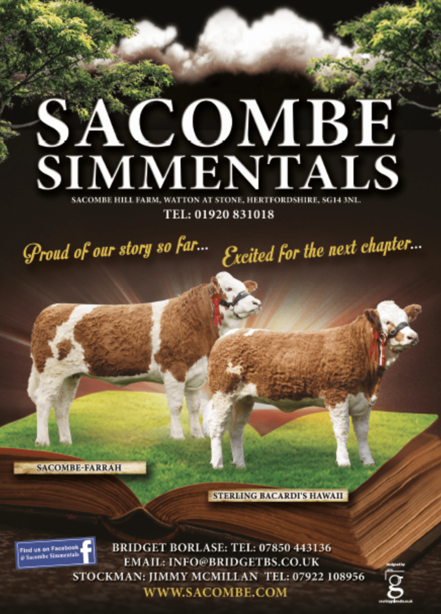 Advert artwork for Sacombe Simmentals