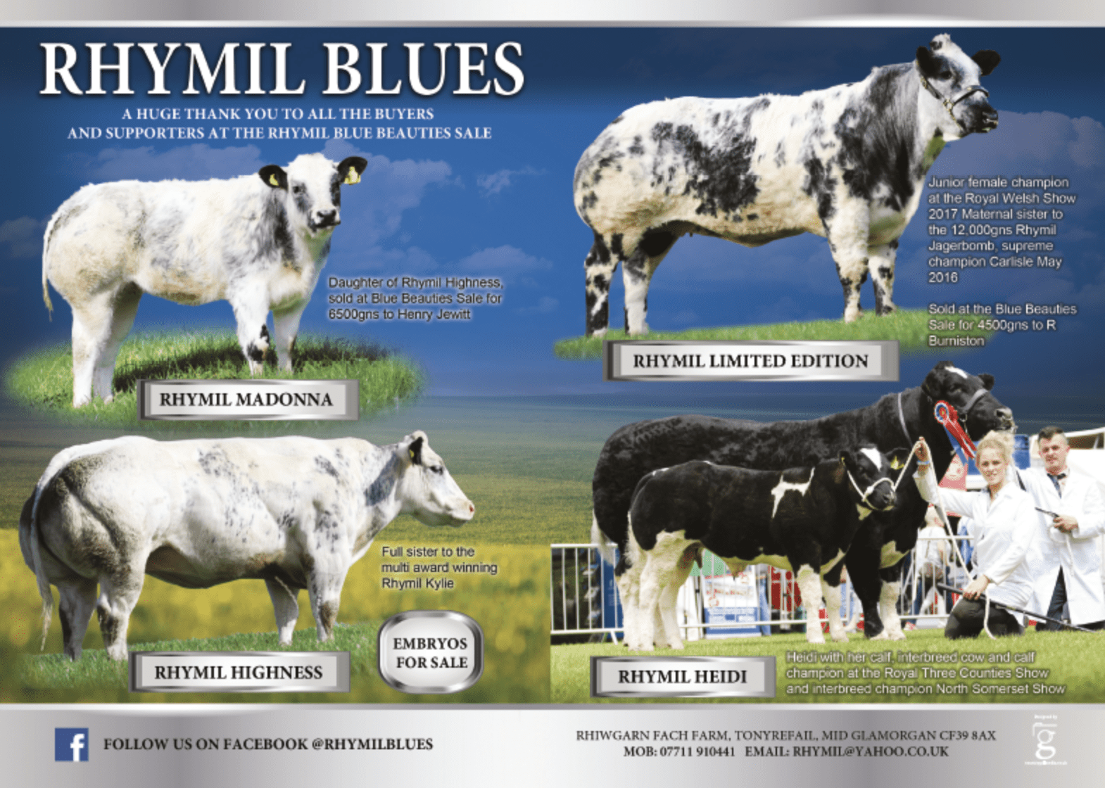 Photography and advert artwork for Rhymil Blues